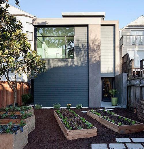 Urban Backyard Garden : Permaculture Adventure