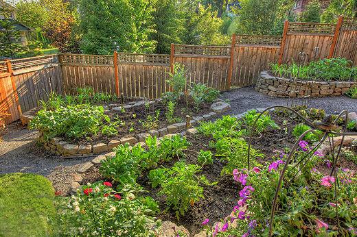 Turn Your Backyard into an Urban Veggie Garden