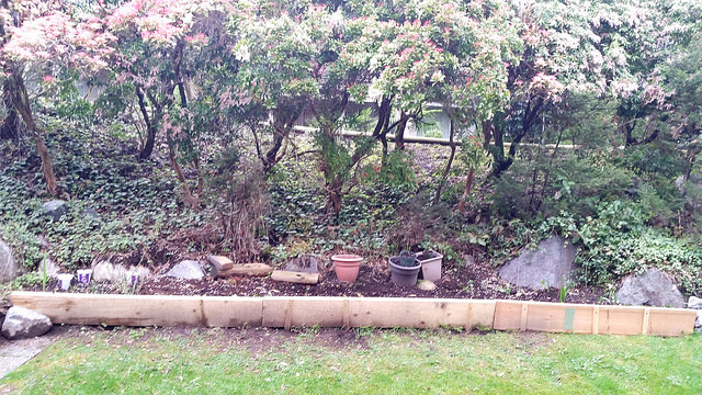 backyard permaculture project - part two (1)